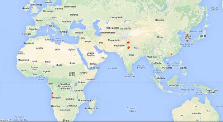 AngoForGeeks Google Track. Foto angoforgeeks.com